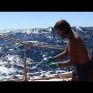 The Tangaroa Expedition (The Kon Tiki Expedition)